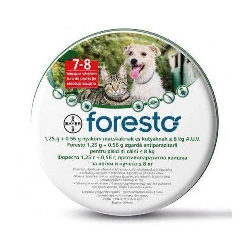 Bayer foresto obroża 38cm dla kota i psa poniżej 8kg