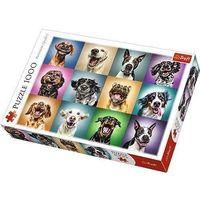 Puzzle, Puzzle Zabawne psie portrety 1000