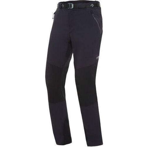 Spodnie męskie, Directalpine Badile 4.0 Spodnie Mężczyźni, black/black S 2020 Spodnie syntetyczne