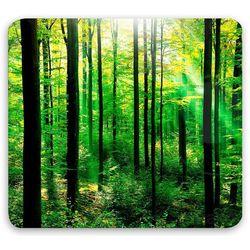 Szklana płyta ochronna FOREST na kuchenkę – duża, WENKO