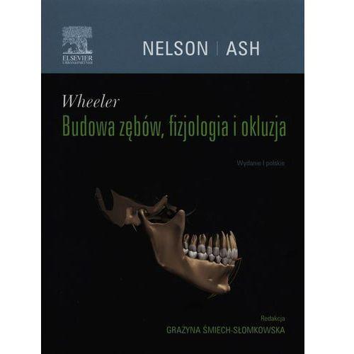 Książki medyczne, Wheeler Budowa zębów fizjologia i okluzja (opr. twarda)
