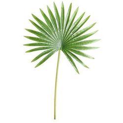 Sztuczny liść LEWISTONA 50 cm