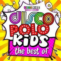 Pozostała muzyka rozrywkowa, DISCO POLO KIDS THE BEST OF - Różni Wykonawcy (Płyta CD)