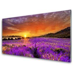 Panel Szklany Zachód Słońca Pole Lawendy