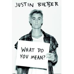 Justin Bieber (What Do You Mean?) - plakat