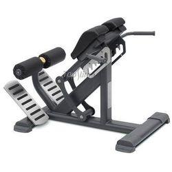Maszyna do ćwiczeń mięśni grzbietu BML 11 MasterSport
