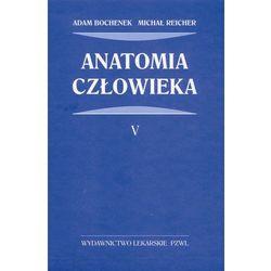 Anatomia człowieka (opr. twarda)
