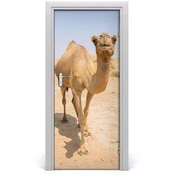 Naklejka samoprzylepna na drzwi Wielbłąd na pustyni