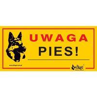 """Oznakowanie informacyjne i ostrzegawcze, DINGO tabliczka ostrzegawcza """"UWAGA PIES"""" - """"UWAGA PIES"""""""