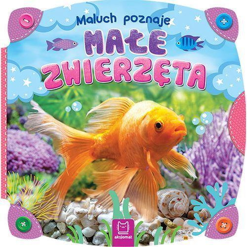 Książki dla dzieci, MALUCH POZNAJE MAŁE ZWIERZĘTA - Opracowanie zbiorowe OD 24,99zł DARMOWA DOSTAWA KIOSK RUCHU (opr. kartonowa)