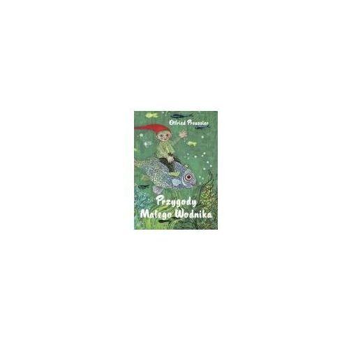 Książki dla dzieci, Przygody małego wodnika (opr. twarda)