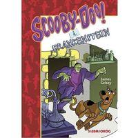 Literatura młodzieżowa, Scooby-Doo! i Frankenstein - Gelsey James - książka (opr. broszurowa)