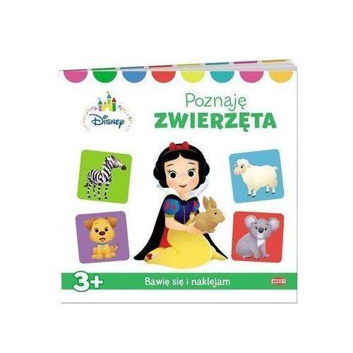 Książki dla dzieci, Disney Maluch Poznaję zwierzęta - Praca zbiorowa (opr. broszurowa)