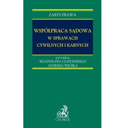 Współpraca sądowa w sprawach cywilnych i karnych - Władysław Czapliński, Andrzej Wróbel (opr. twarda)