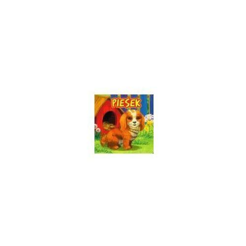 Książki dla dzieci, Piesek jafi (opr. twarda)