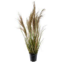 Kaemingk Kwitnąca trawa w doniczce, 85 cm