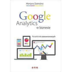 Google Analytics w biznesie Poradnik dla zaawansowanych - Dostawa 0 zł (opr. miękka)