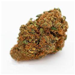 Susz konopny z CBD 10.4% Orange Skunk 2g Cbweed 2g