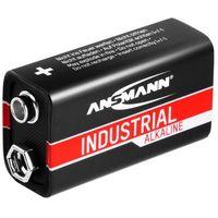 Baterie, Baterie przemysłowe - alkaliczne - 9V - E-Block - 6LR61