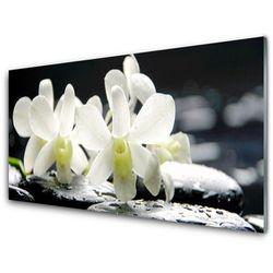 Panel Szklany Kamienie Kwiaty Orchidea