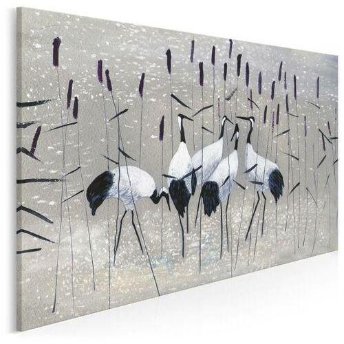 Obrazy, Żurawie nad rozlewiskiem - nowoczesny obraz na płótnie