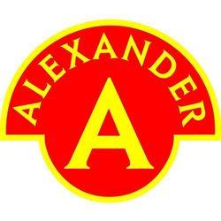 Alexander zestaw konstrukcyjny mały konstruktor 5w1 - noah (5906018019247)