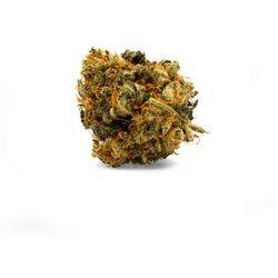 Susz konopny z CBD 10 % Bubble Gum 2g Cbweed 2g