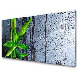 Panel Szklany Bambus Liść Roślina Przyroda