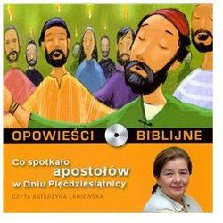 Opowieści biblijne. Tom 22. Co spotkało apostołów w Dniu Pięćdziesiątnicy (książka + CD) Praca zbiorowa