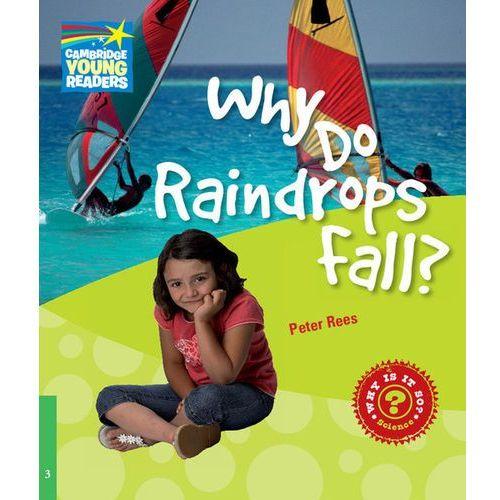 Książki do nauki języka, Why Do Raindrops Fall? Cambridge Young Readers. Poziom 3 (opr. miękka)
