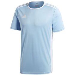Koszulka dla dzieci adidas Entrada 18 Jersey JUNIOR błękitna CD8414/CF1045