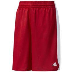 Spodenki koszykarskie Adidas - CD8653 99 bt (-23%)