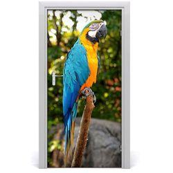 Naklejka samoprzylepna na drzwi ścianę Papuga Ara