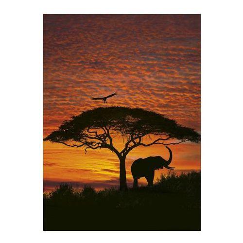 Fototapety, Fototapeta African Sunset 194 x 270 cm