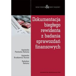 Dokumentacja biegłego rewidenta z badania sprawozdań finansowych (opr. miękka)
