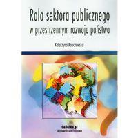 Politologia, Rola sektora publicznego w przestrzennym rozwoju państwa (opr. miękka)