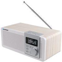 Radioodbiorniki, Blaupunkt PP14