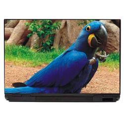 Naklejka na laptopa niebieska papuga p116
