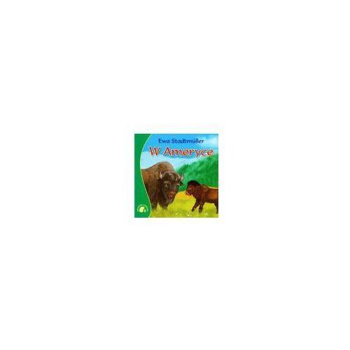 Książki dla dzieci, W Ameryce (opr. miękka)