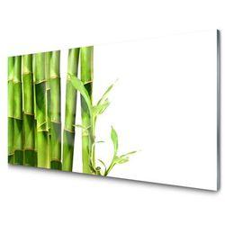 Panel Kuchenny Bambus Roślina