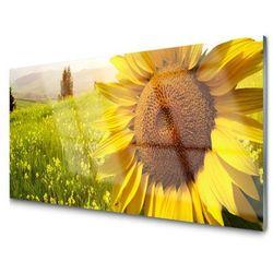 Obraz Szklany Słonecznik Kwiat Roślina