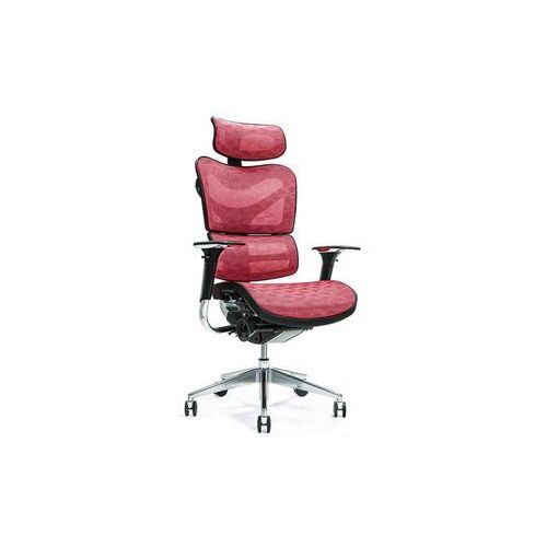 Fotele i krzesła biurowe, Ergonomiczny fotel biurowy ERGO 700 czerwony