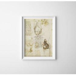 Plakat w stylu retro Plakat w stylu retro Da Vinci Print Układ rozrodczy męski i żeński