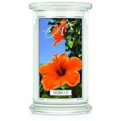 HIBISCUS świeca zapachowa Kringle Candle Hibiskus Duży słoik 22oz, 623g, 2 knoty