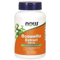 Now Foods Boswellia Extract 500 mg 90 kapsułek