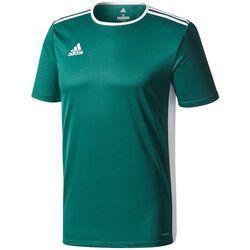 Koszulka dla dzieci adidas Entrada 18 Jersey JUNIOR zielona CD8358/CE9563